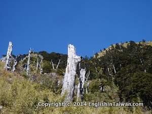 Jade mountain front peak beautiful scenery
